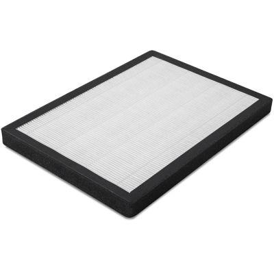 Filtro HEPA (rendimiento del filtro del 99,97%) para AirgoClean 100 E